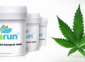 Cannabis terapeutica ceca arriva nelle farmacie, più economica di quella olandese