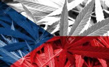 Quanta e quale droga si può detenere a Praga e in Repubblica Ceca?