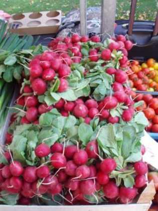 Mercati contadini a Praga: dove trovare specialità gastronomiche e frutta e verdura fresca di stagione