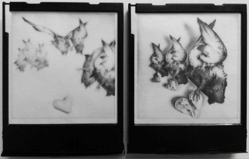 dead-birds-attack-dittico-polaroid-daniele-fiacco
